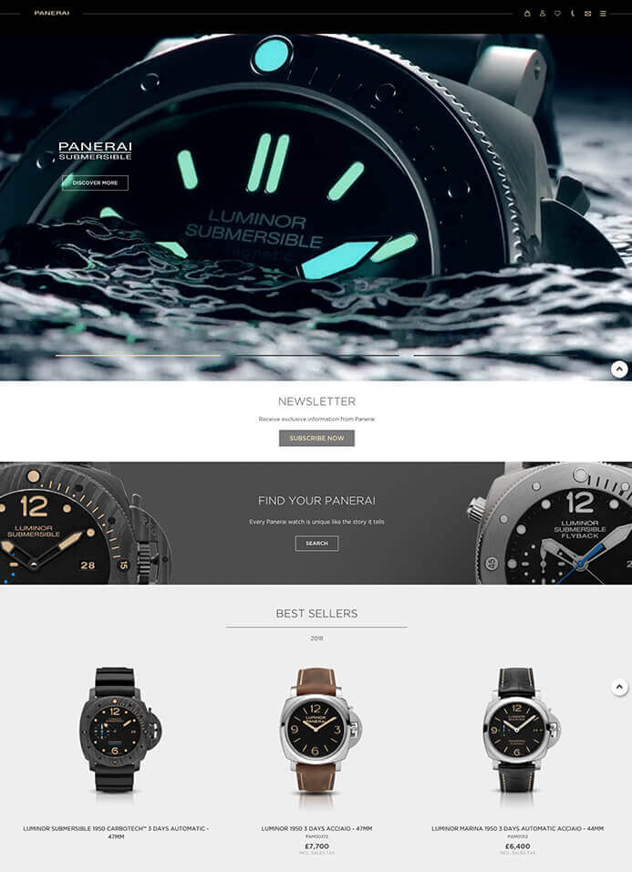 Panerai watch brand inspiration